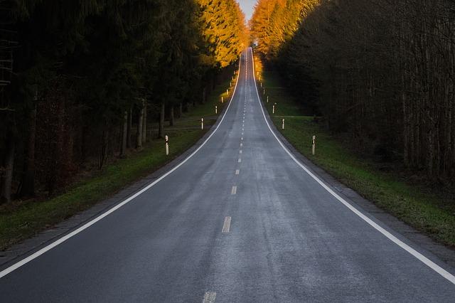 silnice mezi lesy